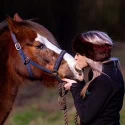 horse-owner-kissing-horses-nose