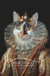 cat head on human king body