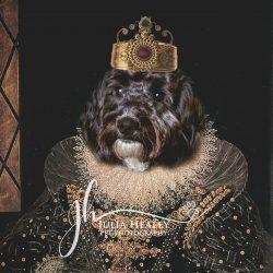dog head on human king body