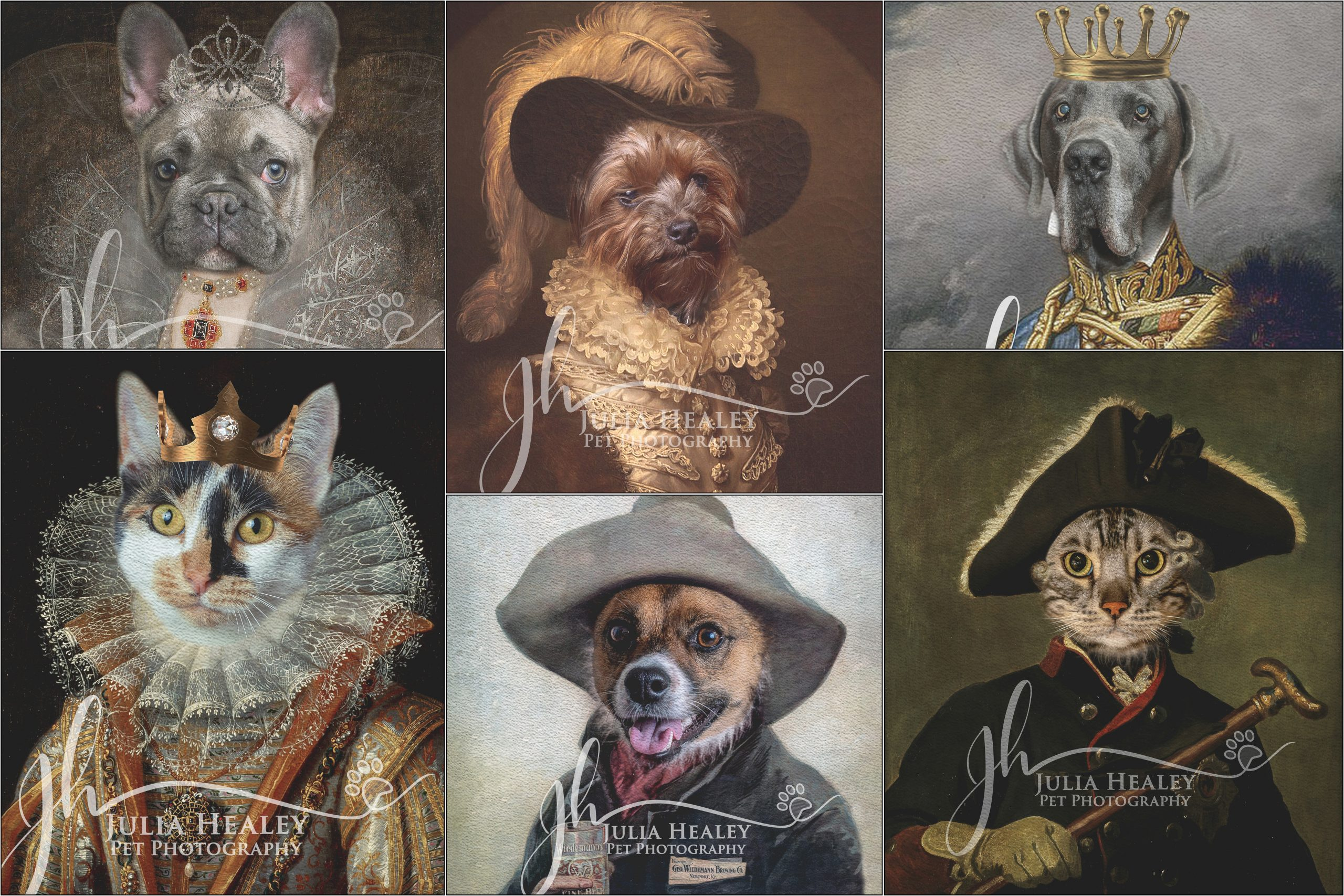 Whiskers and Pawpers Canvas Prints – available now!