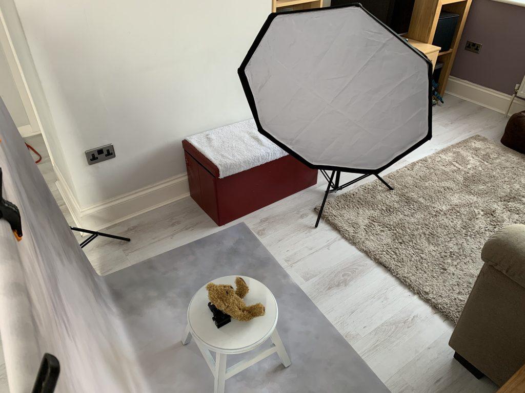 home studio set up pet pawtrait photoshoot