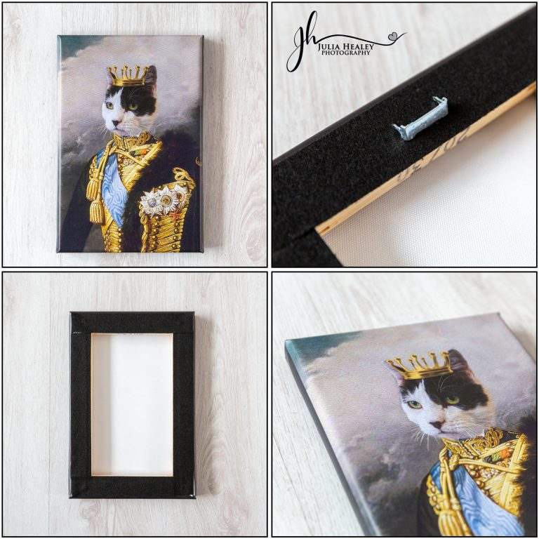 whiskers and pawpers canvas